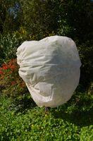 4er Set Wintervlies Pflanzenvlies Pflanzenschutz Haube Schutzhaube 60x80cm